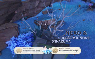 Neko et les succès mignons d'Inazuma